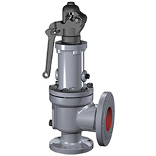 1900 P Process Safety Relief Valve Consolidated