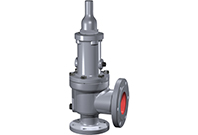 Safety Relief Valves | Consolidated 1900