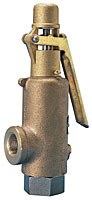 Model 189 Kunkle Safety Valve
